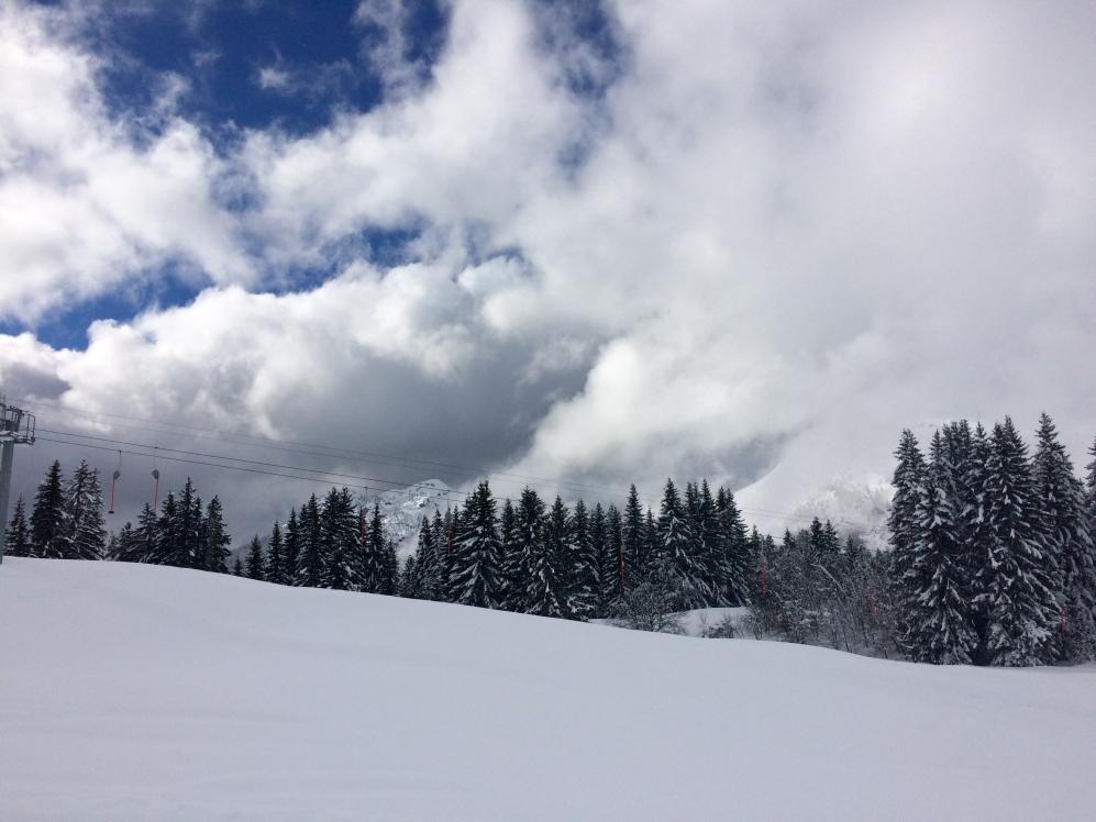 ski11_25842516322_o